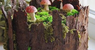 I made a little collection of tree stump cakes and want to share it with you guy...